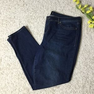 Torrid Blue Jeans